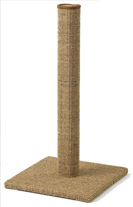 sisal rugs post